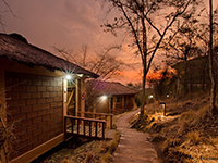 River Turn Lodge Bhadra